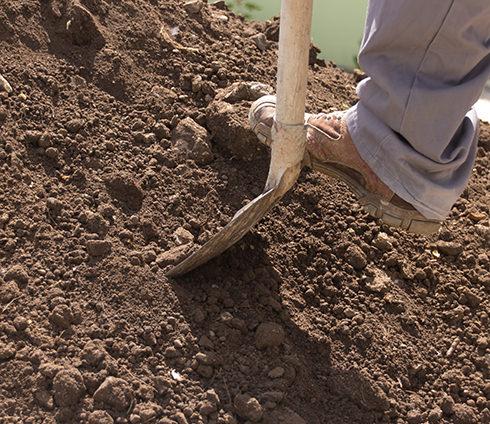 Boden und Steine (Erdaushub)